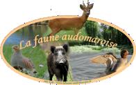 La Faune Audomaroise